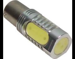 CIPA Universal Light Bulbs