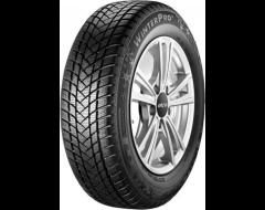 GT Radial WinterPro2 Tires